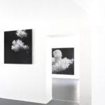 Elvio Chiricozzi Nuvole sole, 2017 matita su legno cm 120 x 120