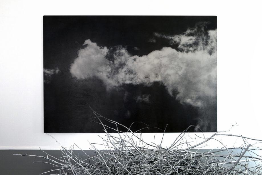 Maura Banfo, Il tempo dei luoghi, 2016 Elvio Chiricozzi, Ritroverai le nubi, 2015